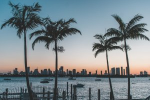 Florida Commercial Real Estate News Roundup 2020 - MMG Equity Partners Florida Retail Experts
