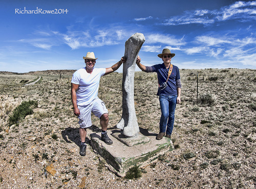 In the footsteps of dinosaurs