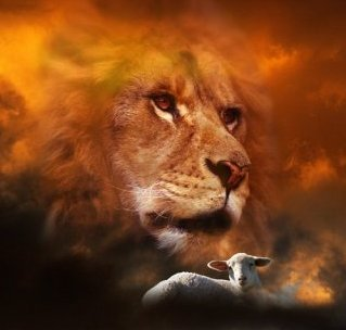 Lion and Lamb on Women in Ministry blog by Cheryl Schatz