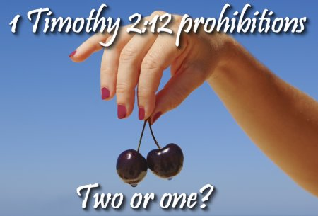 1 Timothy 2:12 two prohibitions or one? on Women in Ministry by Cheryl Schatz