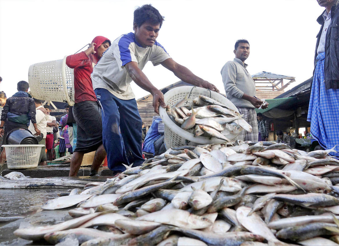 List Of Export Priority Fish Species To China Tabled