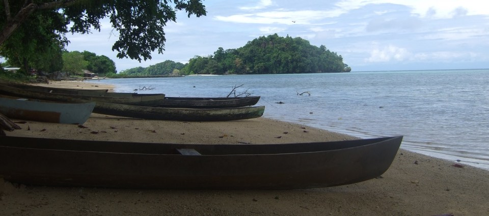 Canoes on a beach with island backdrop