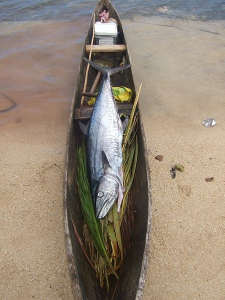 King Fish in a canoe