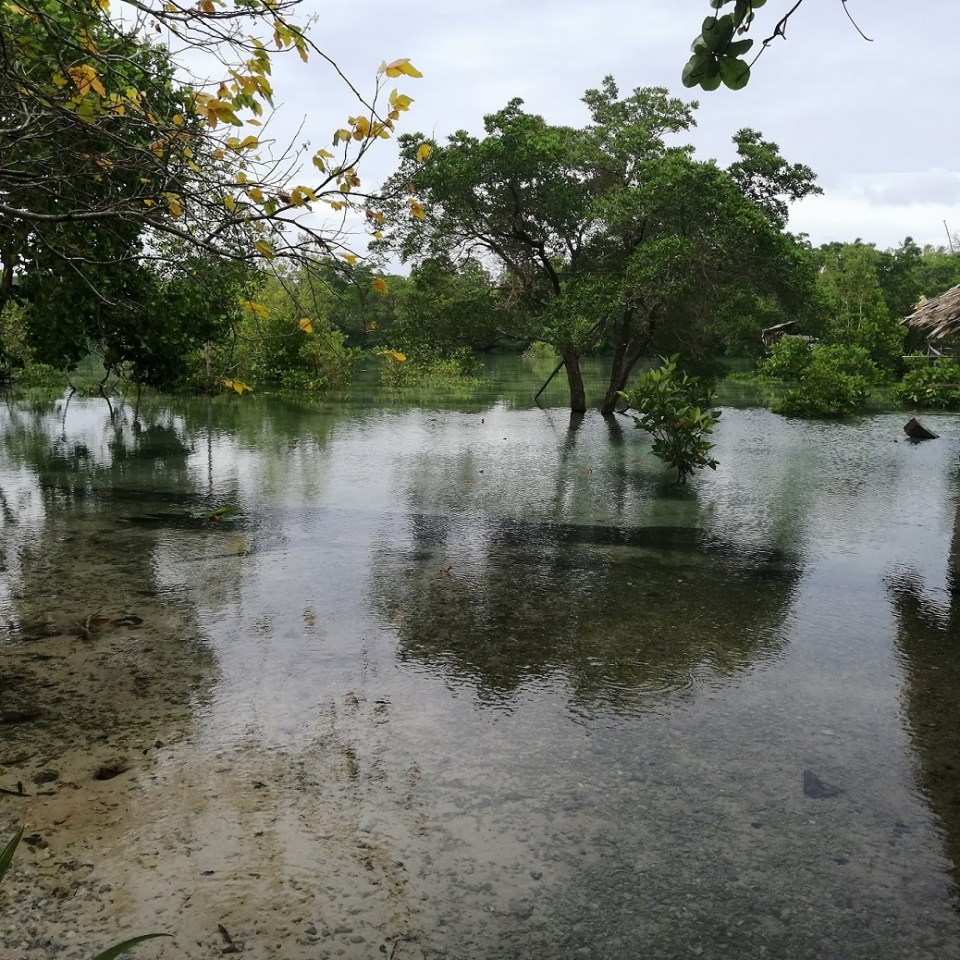 High Tide In The Village