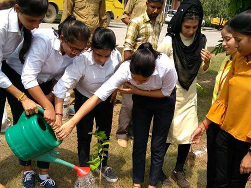 Blood Donation Camp and Tree Plantation