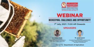 Webinar: Bee Keeping: Challenges And Opportunity