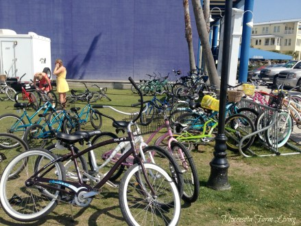 Florida-Seaside-Bikes1