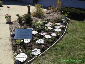 Ainsley's Garden