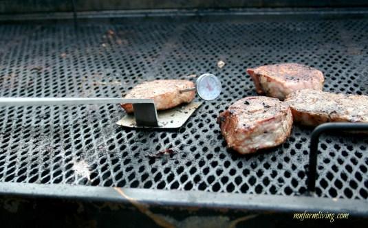 mcfair14_grilling