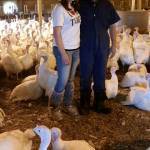 MN Agriculture – Erica Nelson, Time To Talk Turkeys