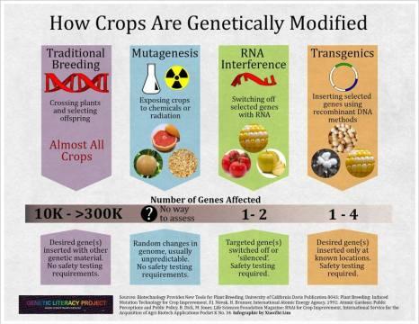 Plant Breeding Chart