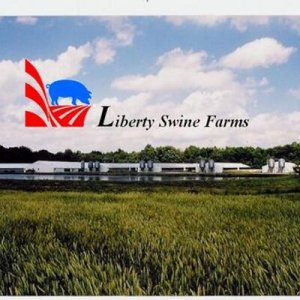 Liberty Swine Farms