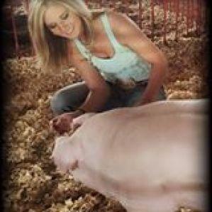 Swine Babe