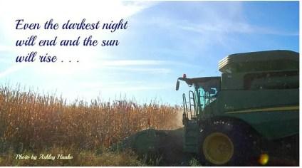 sun harvest-1