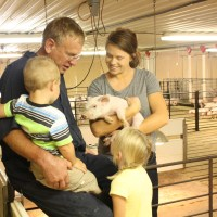 Indoor Pig Barn