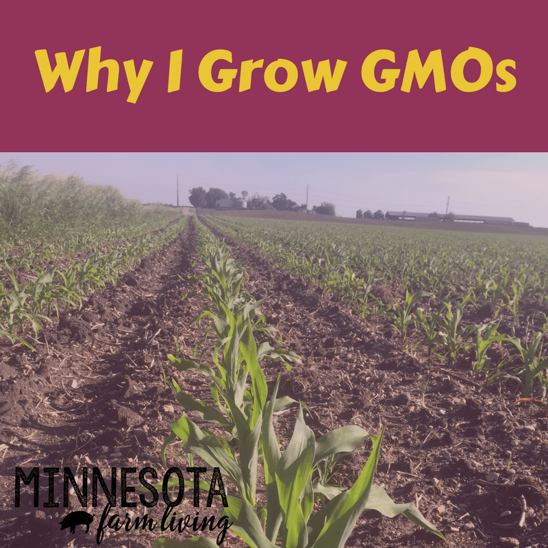 A great recap on why farmers grow genetically engineered crops, or GMOs