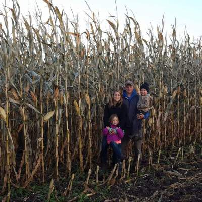 MN Agriculture: Andrew and Chelsa Golberg, First Generation Dairy Farmers