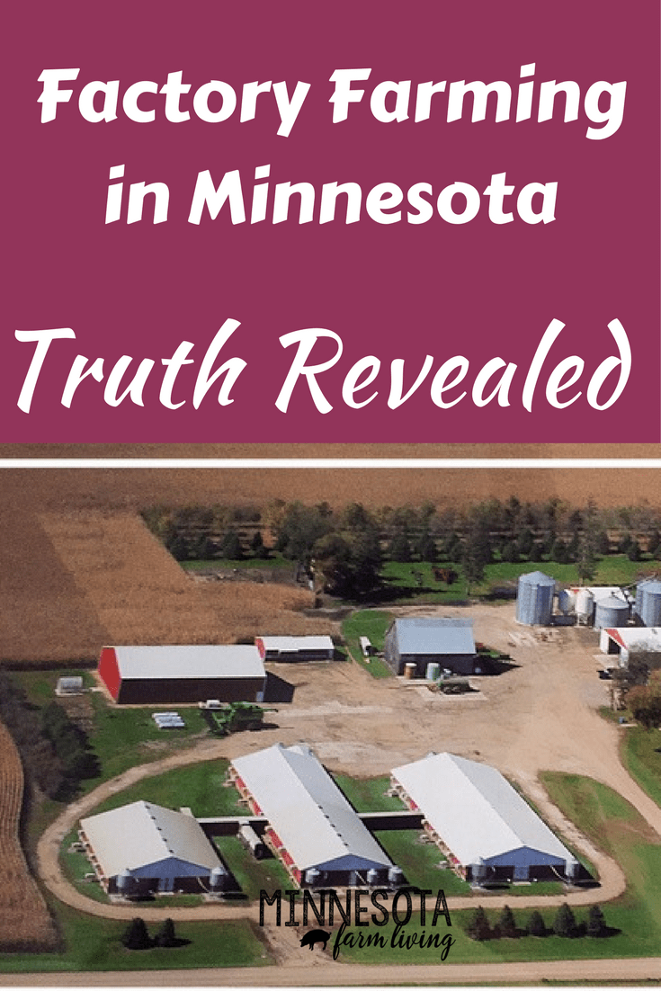 Factory Farming panel held in Minnesota. Unfortunately, much of what was said was fallacy. In addition, they never presented the other side--the truth about farming.