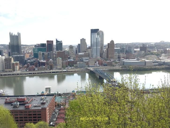 Pittsburgh from Mt Washington