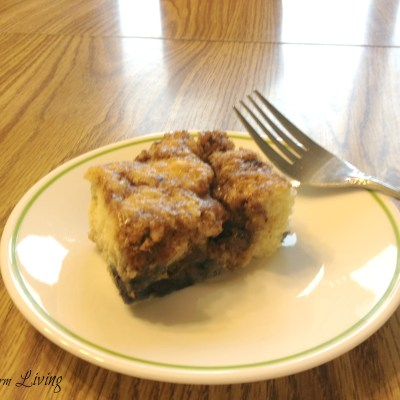 Simple Blueberry Coffee Cake
