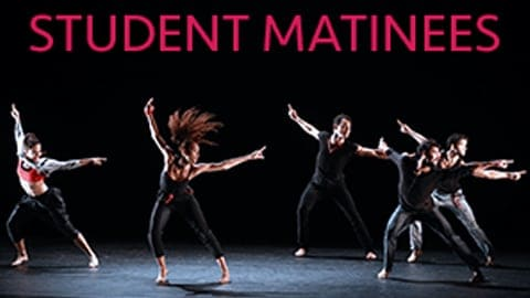student matinee dancing at the northrop