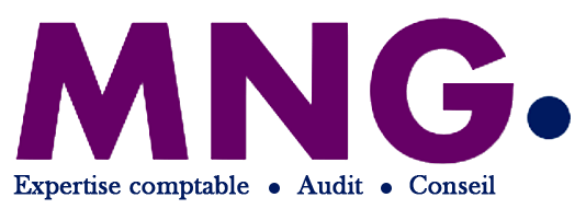 MNG - Audit & Consulting