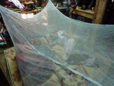 On World Malaria Day, assist forestall the illness in India