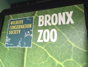 The WCS headquarters are located at the Bronx Zoo - a wonderful working environment!