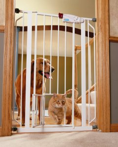 carlson pet products extra tall gate best dog gate for stairs - Dog Gates For Stairs