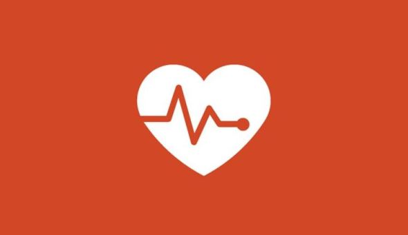 Microsoft Bing Fitness Logo Header