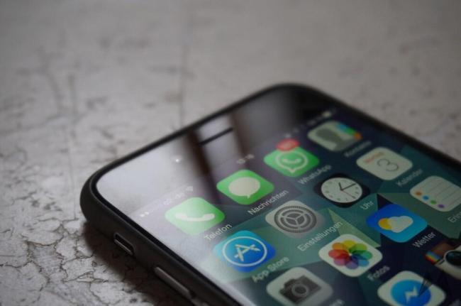 Chimpcase iPhone 6 (5)