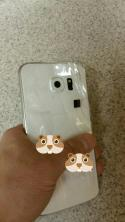 Galaxy S6 Leak (3)