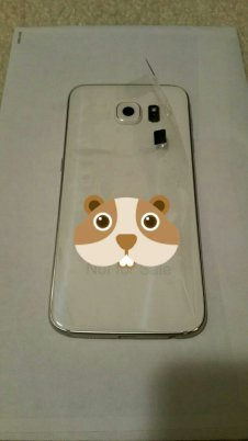 Galaxy S6 Leak Neu (3)