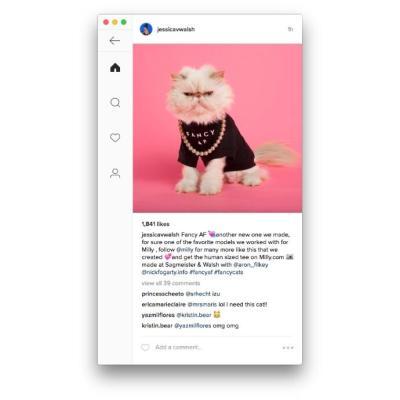 Ramme Instagram