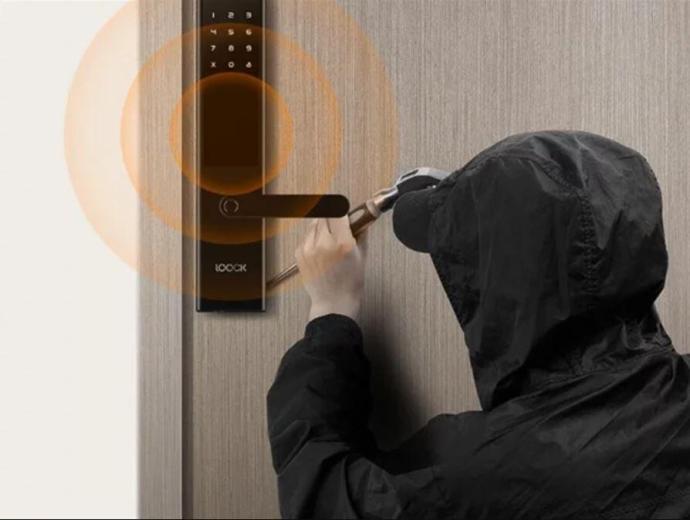 Xiaomi Intelligent Smart Door Lock