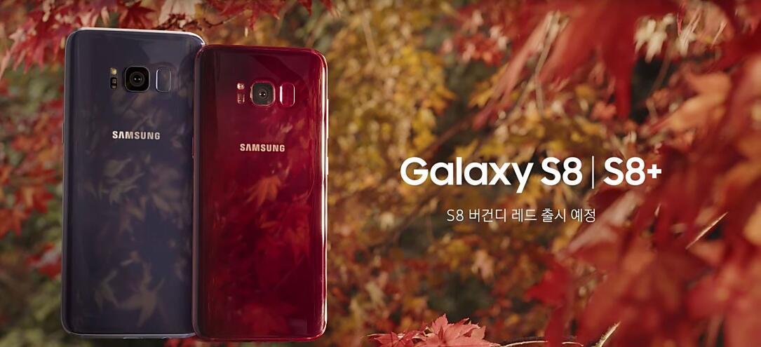 Samsung Galaxy S8 Burgundy Red 1085