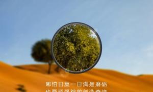 Huawei P30 Pro Zoom Teaser1