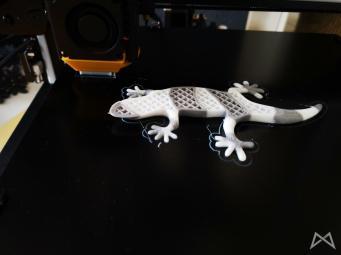Geeetech Gecko Dualcolor Printing