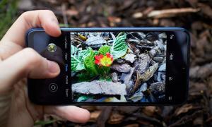 Xiaomi Mi Play Camera