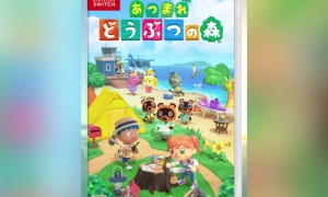 Animal Crossing New Horizons Nintendo Switch Cover