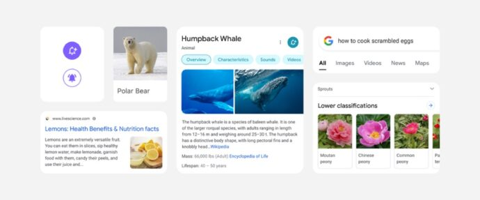 Google Suche Design Neu Elemente