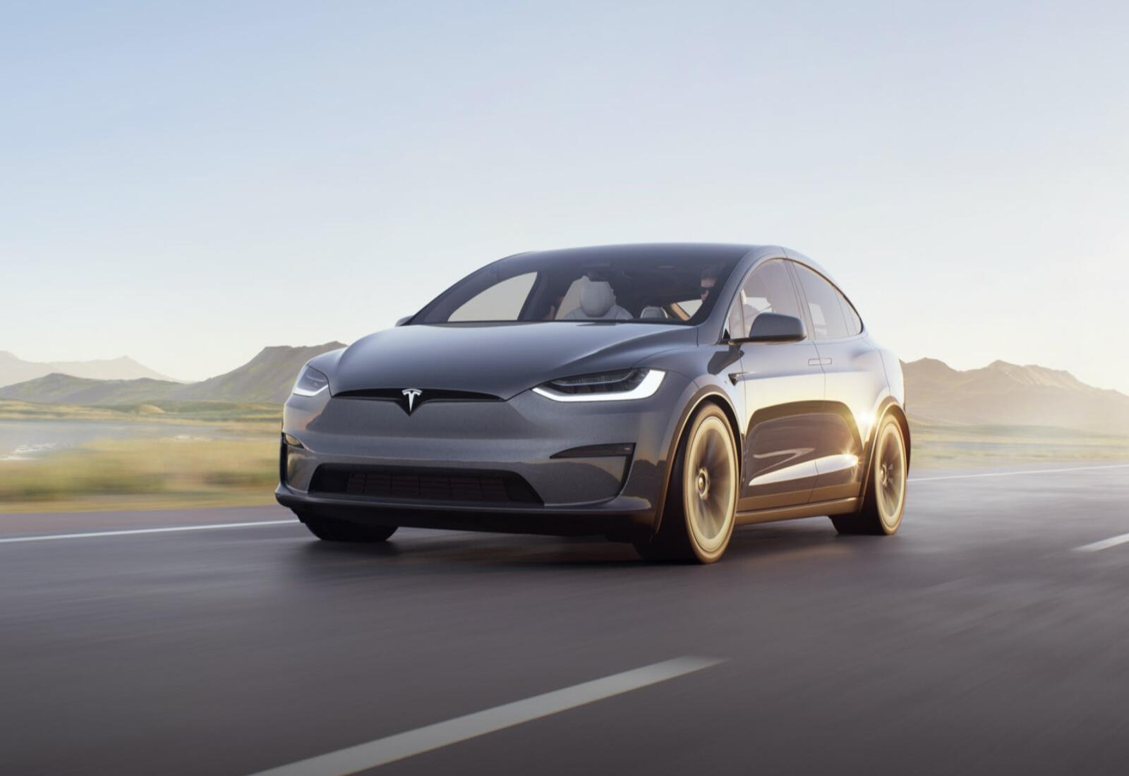 Tesla Model X 2021 Grau Header