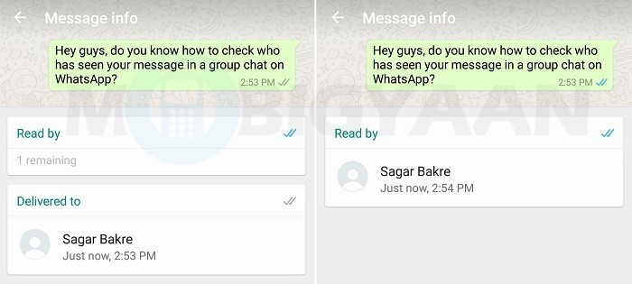 check-messages-ready-by-whatsapp-group-android-guide-2