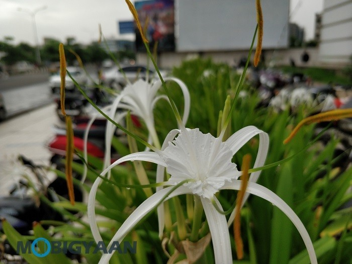 oneplus-5-review-camera-samples-daylight-15