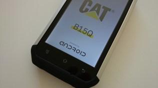 Cat B15Q (6)