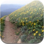Download Trailguru in iTunes