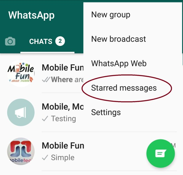 Read Starred Messages