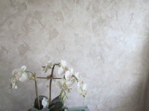 Plaster mobile home wall
