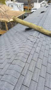 Manufactured Home Roof Damage