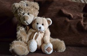 A couple of plush teddy bears